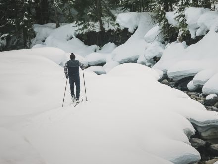 Nordic & Downhill Skiing